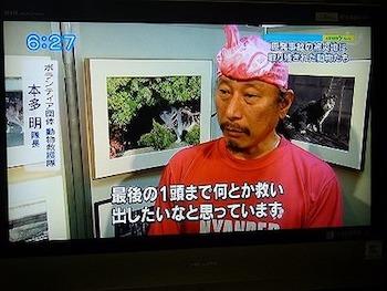 にゃんだー2.jpg