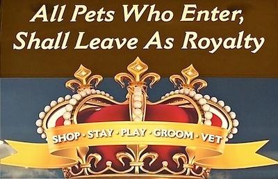 Royal Pets 10.jpg