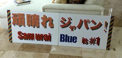 Samurai Blue 4.jpg