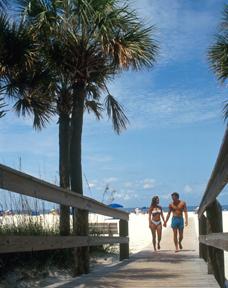 Sand Key Park 1.jpg