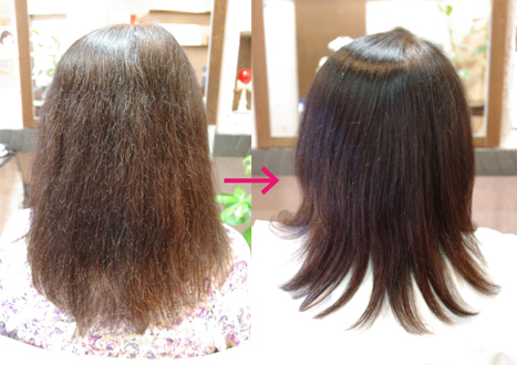 2018年7月号 美容健康:髪の毛(ためしてガッテンからの引用)