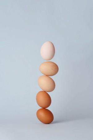 2020年1月号美容健康: Incredible Edible Egg