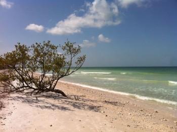 地元情報 ハネムーン島 カラデシ島 2020年4月