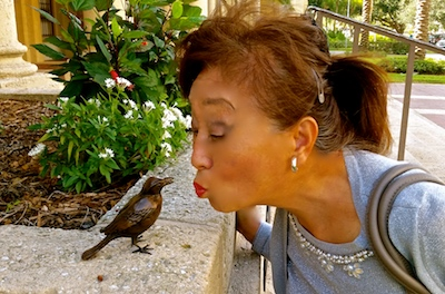 birds  quest 003.jpg