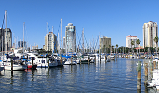 320px-Downtown_St._Petersburg_Florida_from_Marinaのコピー.png