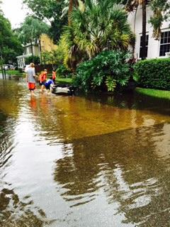 Sep 2015 flood.jpg