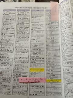 Soma report 5.JPG
