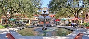 South Tampa 3.jpg