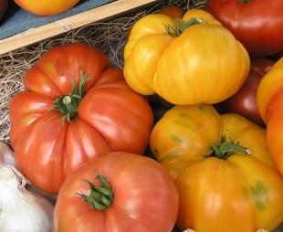 heirloom-tomatoes.jpg