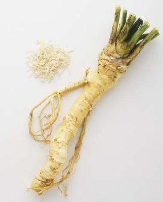 horseradish.jpeg
