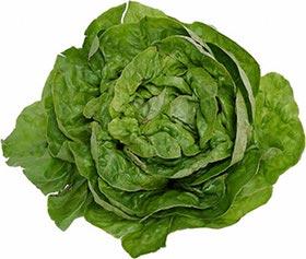 lettuce-escarole.jpg