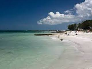 sarasota beach.jpg